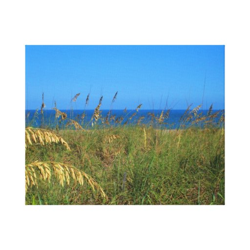 Sea oats beach dune ocean and sky photo gallery wrapped canvas