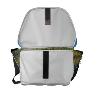 Sea oats beach dune ocean and sky photo courier bags