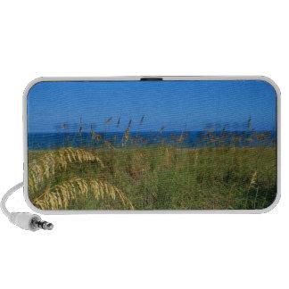 Sea oats beach dune ocean and sky photo mp3 speakers