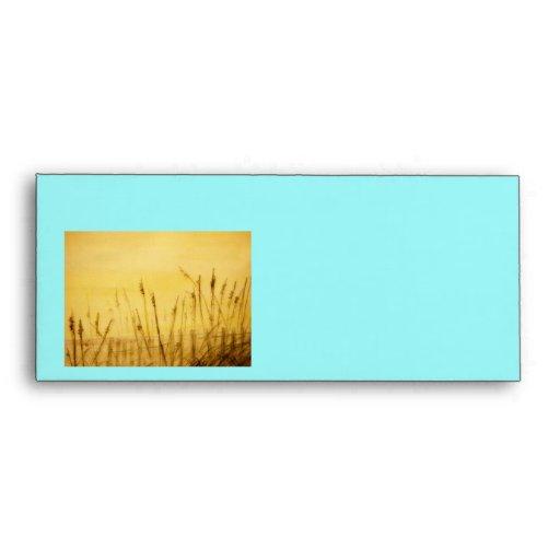 sea oats envelope
