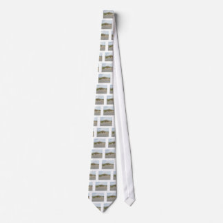 Sea Oats on Sand Dune Outer Banks NC Neck Tie