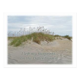 Sea Oats on Sand Dune Outer Banks NC Postcard