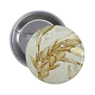 Sea Oats Outer Banks NC Series Pinback Button
