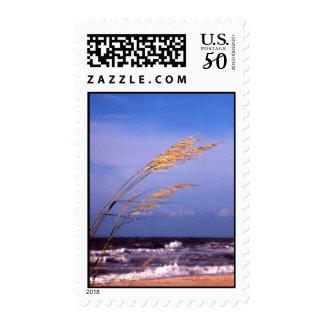 Sea Oats Postage