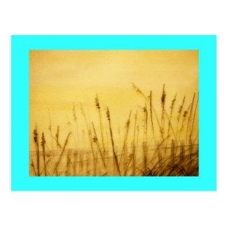 sea oats postcard