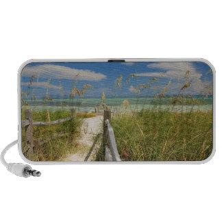 Sea oats Uniola paniculata) growing by beach, iPhone Speaker
