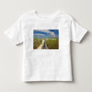 Sea oats Uniola paniculata) growing by beach, Toddler T-shirt