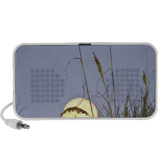 Sea Oats Uniola paniculata) growing on sand Portable Speakers
