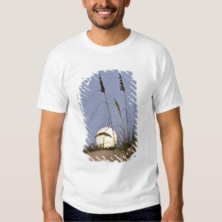 Sea Oats Uniola paniculata) growing on sand T-shirt