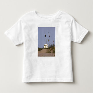 Sea Oats Uniola paniculata) growing on sand Toddler T-shirt
