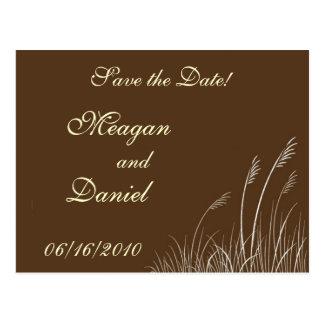 Sea Oats Wedding Postcard