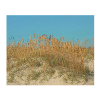 Sea Oats Wood Wall Art