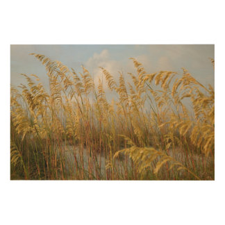 Sea Oats Wood Wall Decor