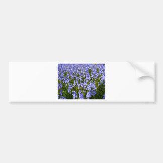 Sea of bluebells bumper sticker