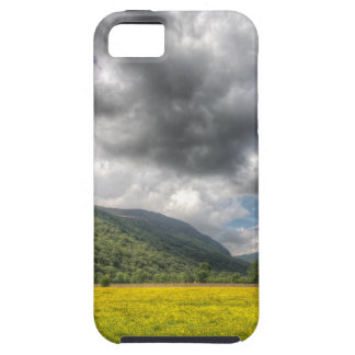 Sea of buttercups: The Lake District, Cumbria iPhone 5 Covers