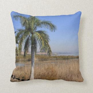 Sea of Galilee in Israel Pillow