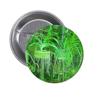 Sea of Orchids growing in a hot box in florida 2 Inch Round Button