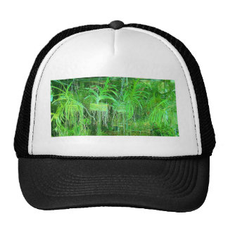 Sea of Orchids growing in a hot box in florida Mesh Hat