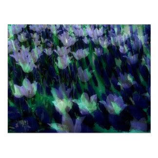 Sea of Tulips Postcard