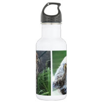 Sea otter and cheetah cub water bottle