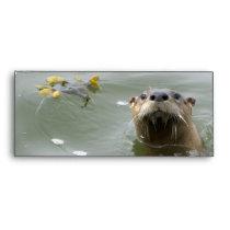 Sea Otter Business Envelopes
