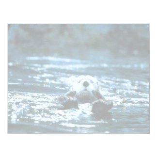 Sea Otter Card