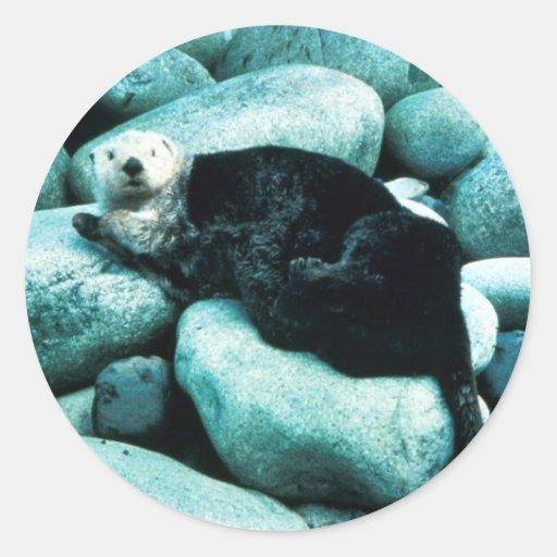 Sea Otter Classic Round Sticker