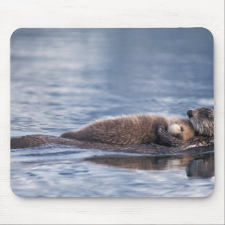 sea otter, Enhydra lutris lutris, mother with 2 Mousepad