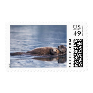 sea otter, Enhydra lutris lutris, mother with 2 Postage