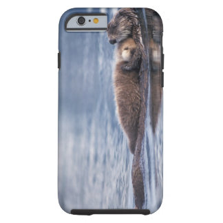 sea otter, Enhydra lutris lutris, mother with 2 Tough iPhone 6 Case
