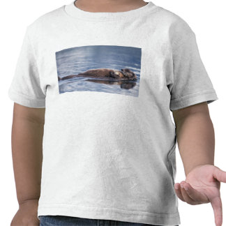 sea otter, Enhydra lutris lutris, mother with 2 Tshirt