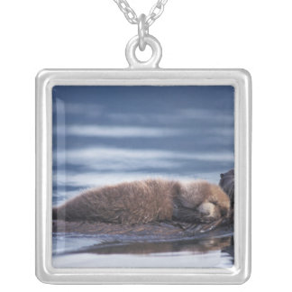 sea otter, Enhydra lutris lutris, mother with Square Pendant Necklace