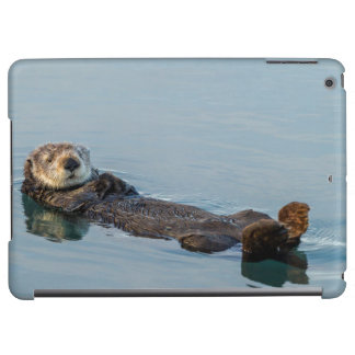 Sea otter floating on back in ocean cover for iPad air