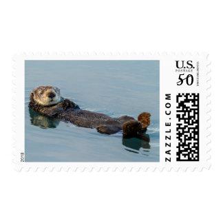 Sea otter floating on back in ocean postage
