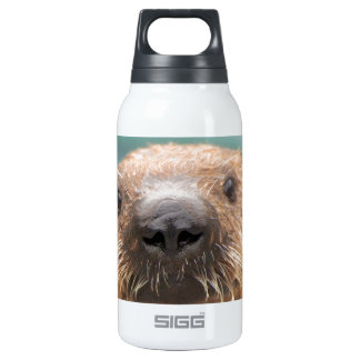 Sea otter love insulated water bottle