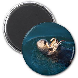 Sea Otter Magnet
