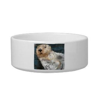 Sea Otter  Pet Bowl