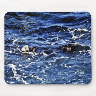 Sea Otter - Pt. Lobos State Preserve Mouse Pad