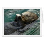 Sea Otter Snacking Stationery Note Card