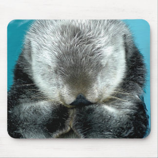 Sea Otter Snoozing Mouse Mat
