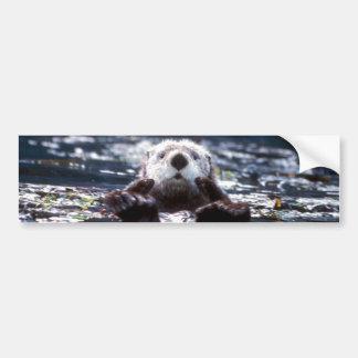Sea Otter Swimming Car Bumper Sticker