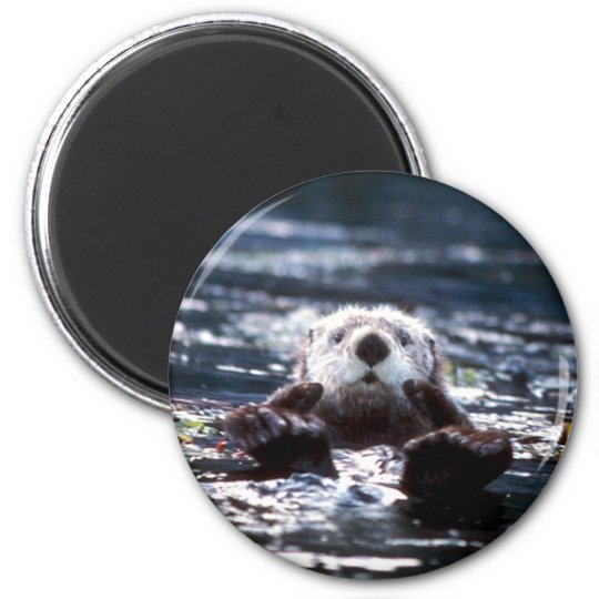 Sea Otter Swimming Magnet