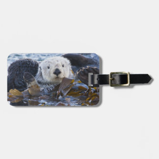 Sea otter wrapped in kelp bag tag