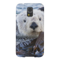 Sea otter wrapped in kelp galaxy s5 case