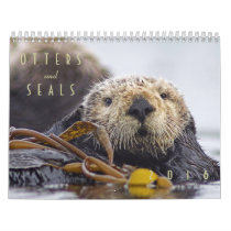 Sea Otters and Seals 2016 Wall Calendar - Wildlife