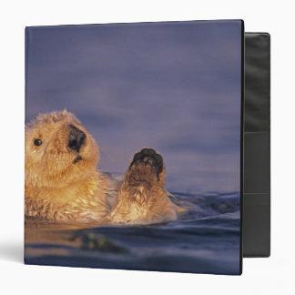 Sea Otters, Enhydra lutris 2 Binder