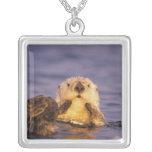 Sea Otters, Enhydra lutris 5 Square Pendant Necklace
