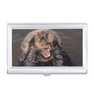 Sea Otters, Enhydra lutris 6 Business Card Case