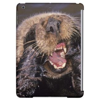 Sea Otters, Enhydra lutris 6 iPad Air Cases