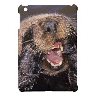 Sea Otters, Enhydra lutris 6 iPad Mini Case